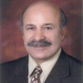 محمدعلی گرجی